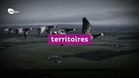GRTgaz-teaser-rapport-annuel